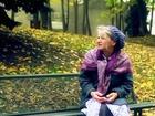 Banc public - la vieille dame et ses pigeons